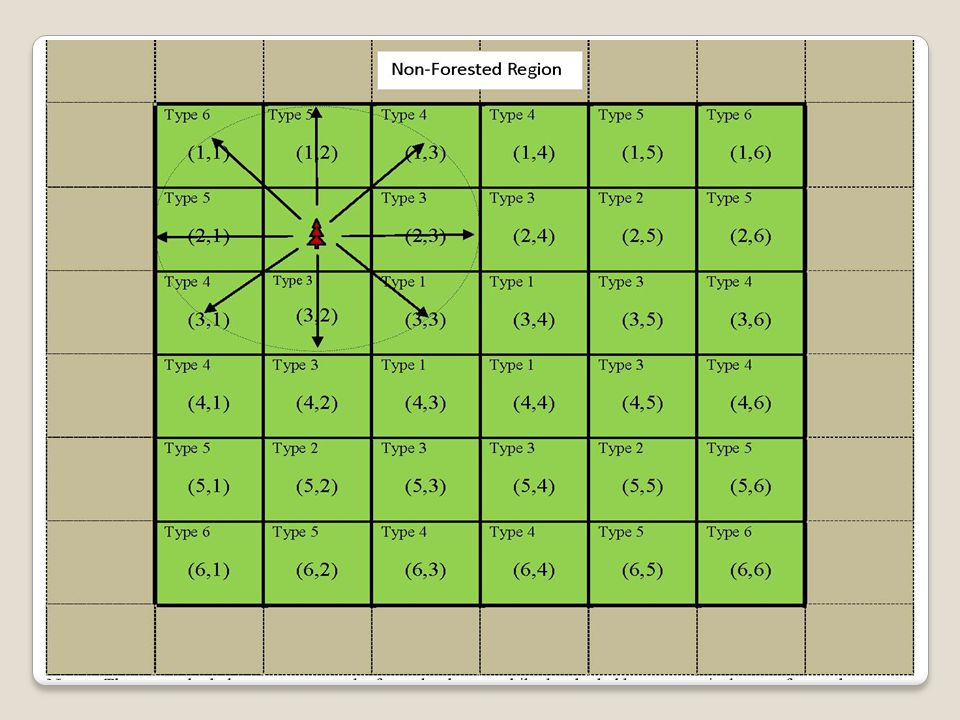Forest Dynamics on cell (i,j) Seed base: Young trees: Adult trees: MPB risk :