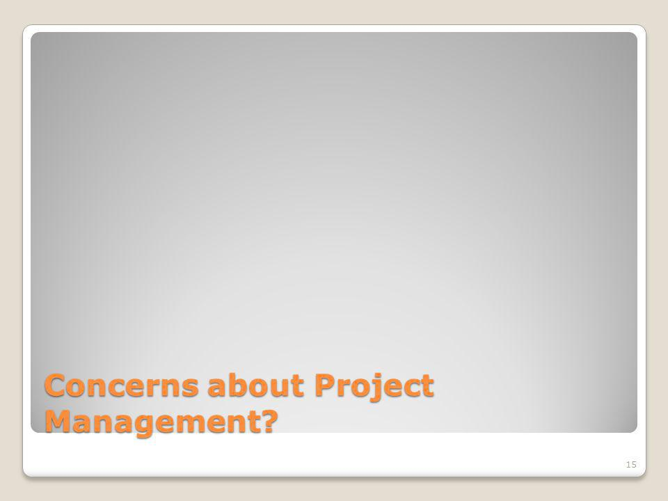 Concerns about Project Management 15