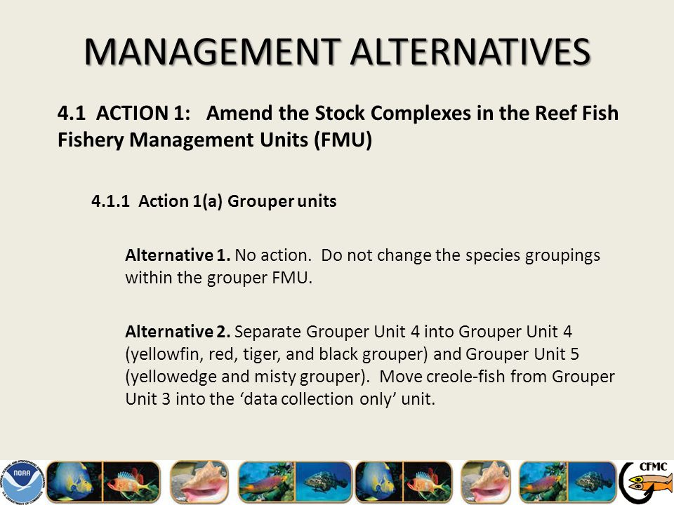 MANAGEMENT ALTERNATIVES 4.1 ACTION 1: Amend the Stock Complexes in the Reef Fish Fishery Management Units (FMU) 4.1.1 Action 1(a) Grouper units Alternative 1.