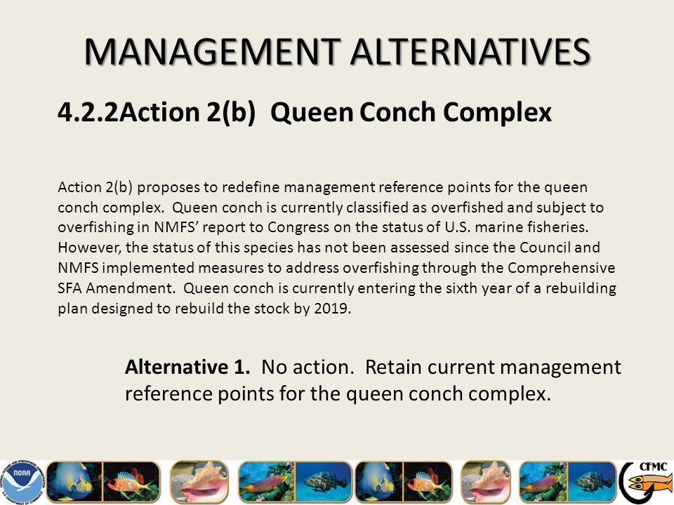 MANAGEMENT ALTERNATIVES 4.2.2Action 2(b) Queen Conch Complex Action 2(b) proposes to redefine management reference points for the queen conch complex.