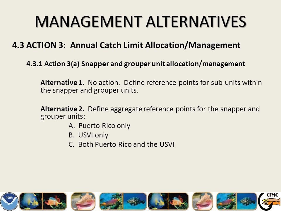 MANAGEMENT ALTERNATIVES 4.3 ACTION 3: Annual Catch Limit Allocation/Management 4.3.1 Action 3(a) Snapper and grouper unit allocation/management Alternative 1.
