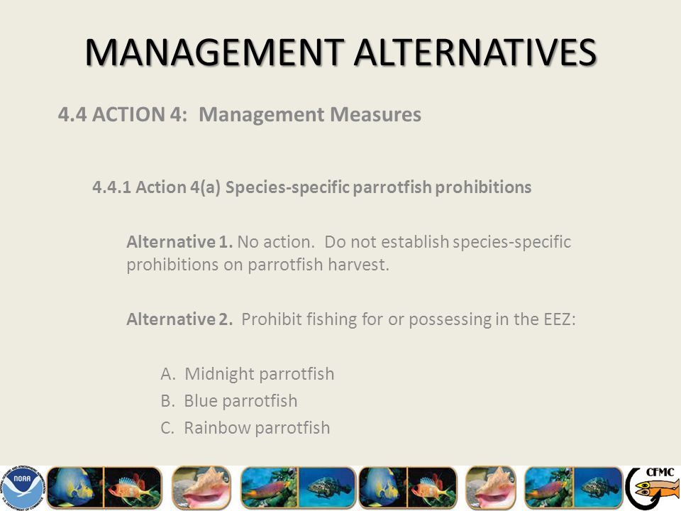 MANAGEMENT ALTERNATIVES 4.4 ACTION 4: Management Measures 4.4.1 Action 4(a) Species-specific parrotfish prohibitions Alternative 1.