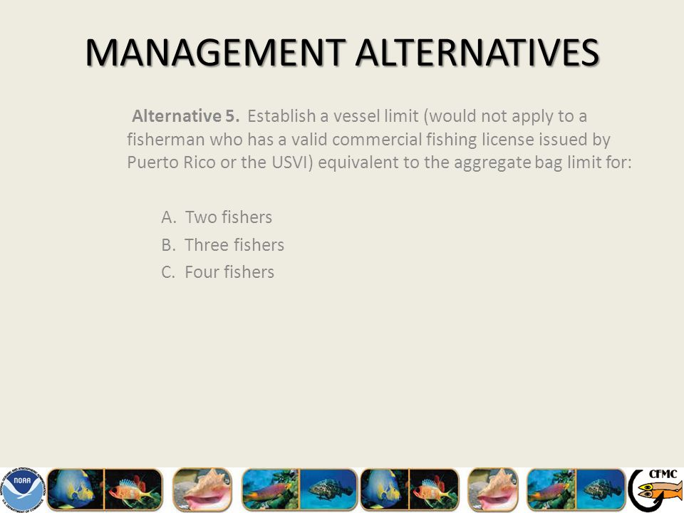 MANAGEMENT ALTERNATIVES Alternative 5.