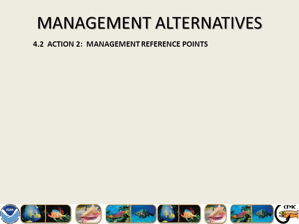 MANAGEMENT ALTERNATIVES 4.2 ACTION 2: MANAGEMENT REFERENCE POINTS