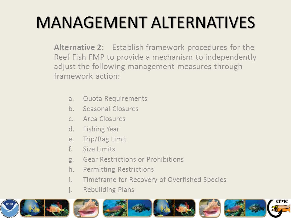 MANAGEMENT ALTERNATIVES Alternative 2:Establish framework procedures for the Reef Fish FMP to provide a mechanism to independently adjust the following management measures through framework action: a.Quota Requirements b.Seasonal Closures c.Area Closures d.Fishing Year e.Trip/Bag Limit f.Size Limits g.Gear Restrictions or Prohibitions h.Permitting Restrictions i.Timeframe for Recovery of Overfished Species j.Rebuilding Plans