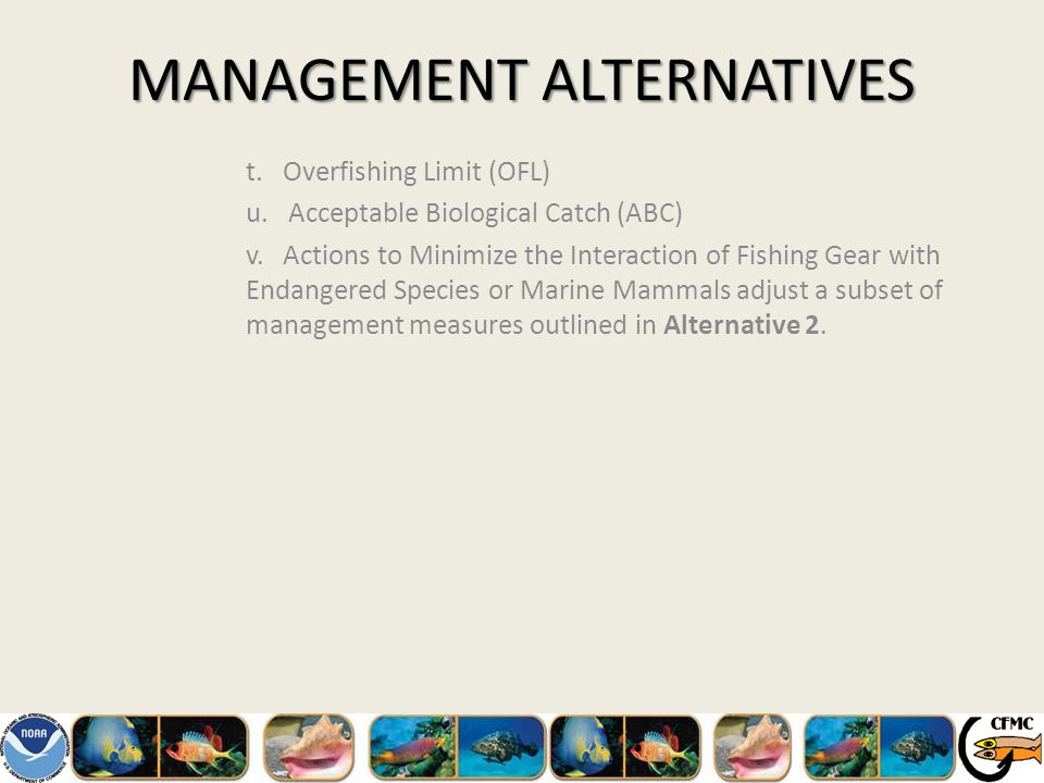 MANAGEMENT ALTERNATIVES t. Overfishing Limit (OFL) u.