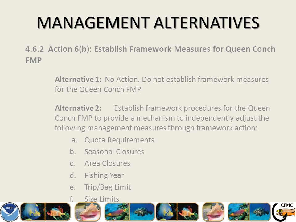 MANAGEMENT ALTERNATIVES 4.6.2 Action 6(b): Establish Framework Measures for Queen Conch FMP Alternative 1: No Action.