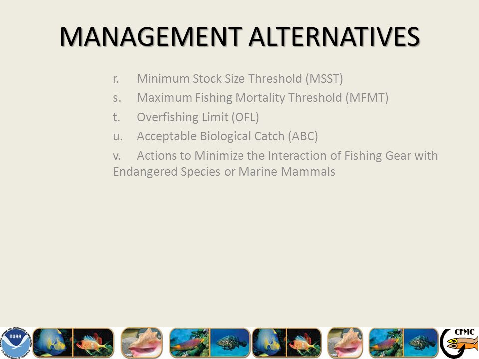 MANAGEMENT ALTERNATIVES r.Minimum Stock Size Threshold (MSST) s.Maximum Fishing Mortality Threshold (MFMT) t.Overfishing Limit (OFL) u.Acceptable Biological Catch (ABC) v.Actions to Minimize the Interaction of Fishing Gear with Endangered Species or Marine Mammals