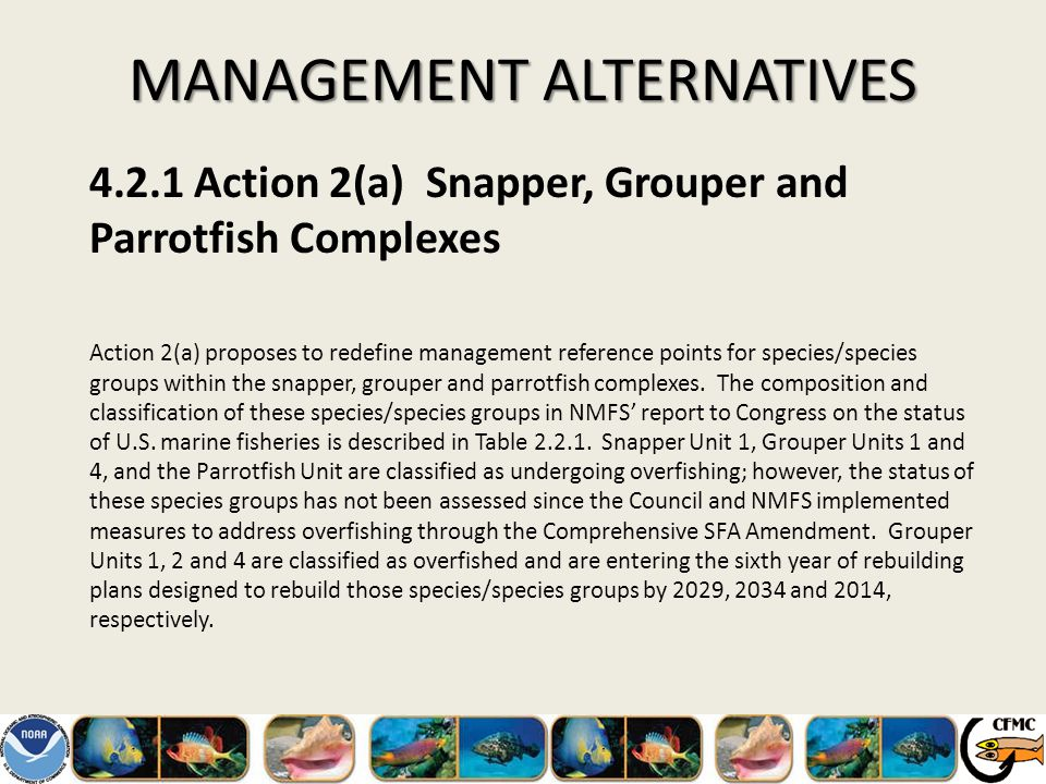 MANAGEMENT ALTERNATIVES 4.2.1Action 2(a) Snapper, Grouper and Parrotfish Complexes Action 2(a) proposes to redefine management reference points for species/species groups within the snapper, grouper and parrotfish complexes.