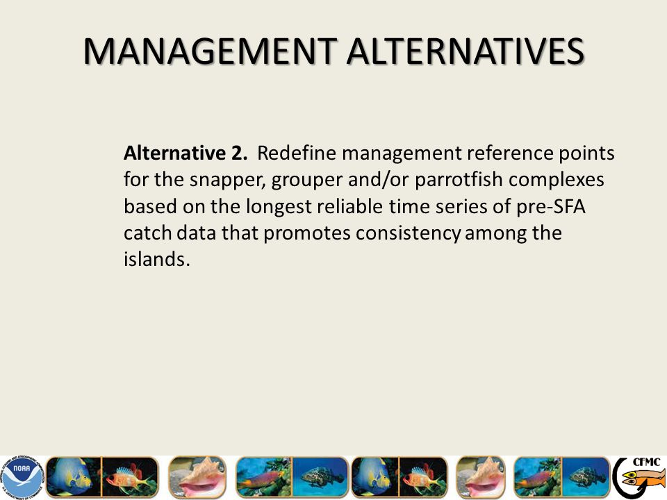 MANAGEMENT ALTERNATIVES Alternative 2.