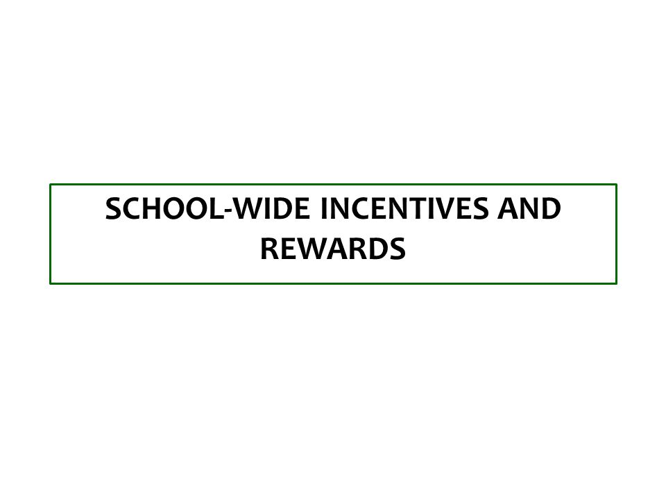 SCHOOL-WIDE INCENTIVES AND REWARDS