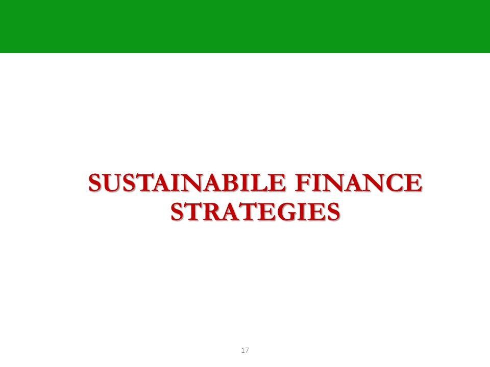 17 SUSTAINABILE FINANCE STRATEGIES
