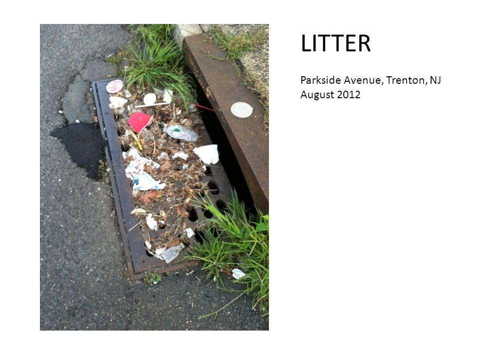 LITTER Parkside Avenue, Trenton, NJ August 2012