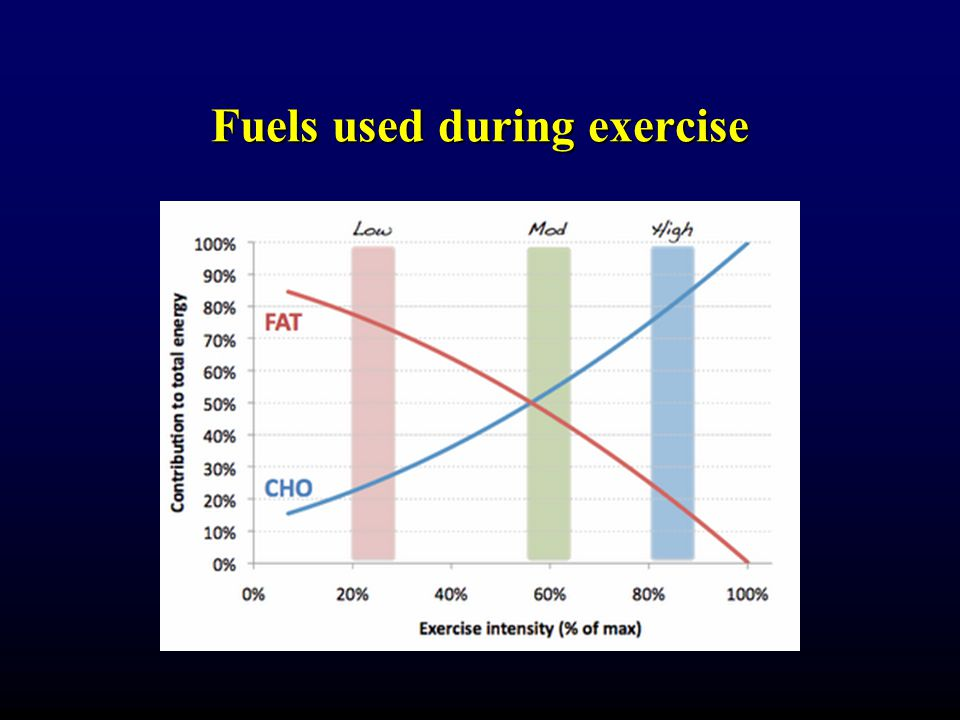 Fuels used during exercise