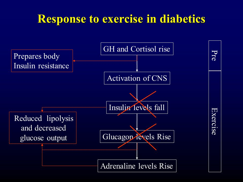 Response to exercise in diabetics GH and Cortisol rise Activation of CNS Insulin levels fall Glucagon levels Rise Adrenaline levels Rise Prepares body Insulin resistance Reduced lipolysis and decreased glucose output Pre Exercise