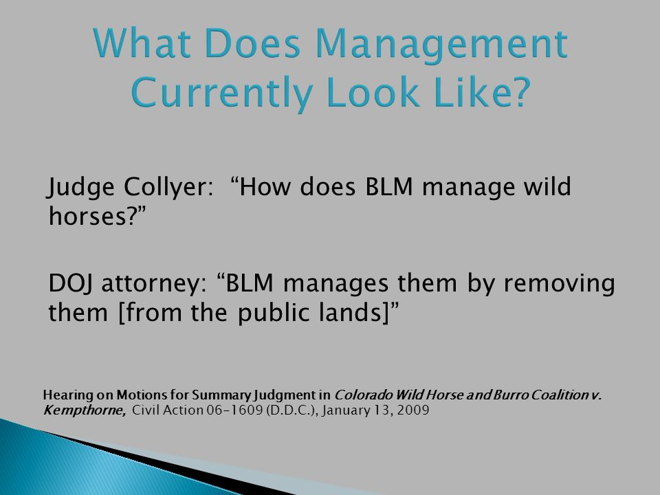 Judge Collyer: How does BLM manage wild horses.