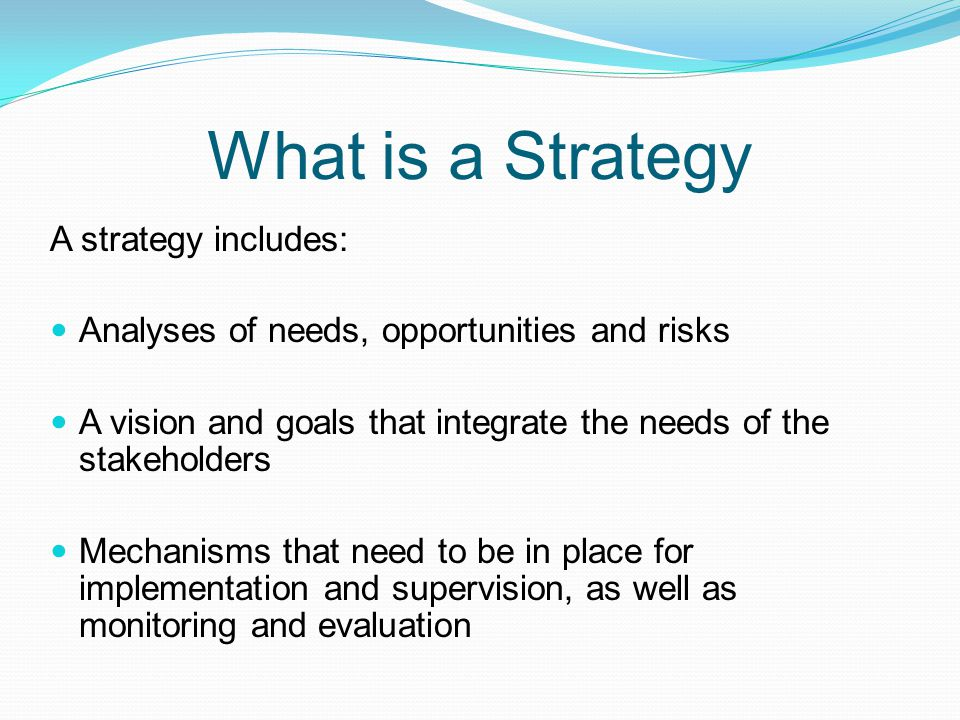 A strategy includes: Analyses of needs, opportunities and risks A vision and goals that integrate the needs of the stakeholders Mechanisms that need t
