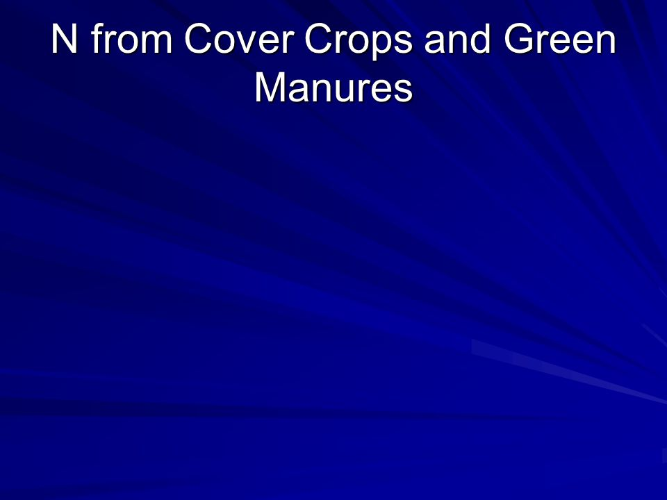 N from Cover Crops and Green Manures