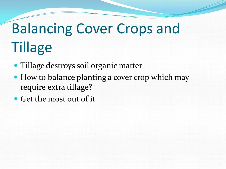 Balancing Cover Crops and Tillage Tillage destroys soil organic matter How to balance planting a cover crop which may require extra tillage.