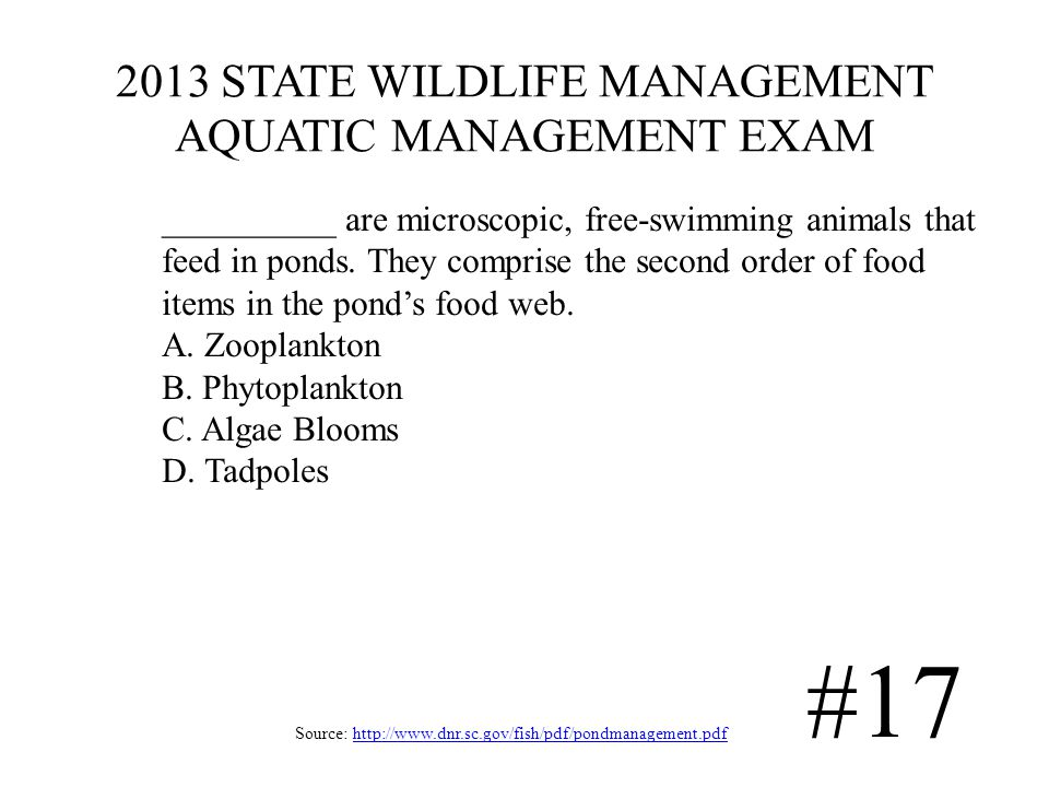 2013 STATE WILDLIFE MANAGEMENT AQUATIC MANAGEMENT EXAM Source: http://www.dnr.sc.gov/fish/pdf/pondmanagement.pdfhttp://www.dnr.sc.gov/fish/pdf/pondmanagement.pdf #17 __________ are microscopic, free-swimming animals that feed in ponds.