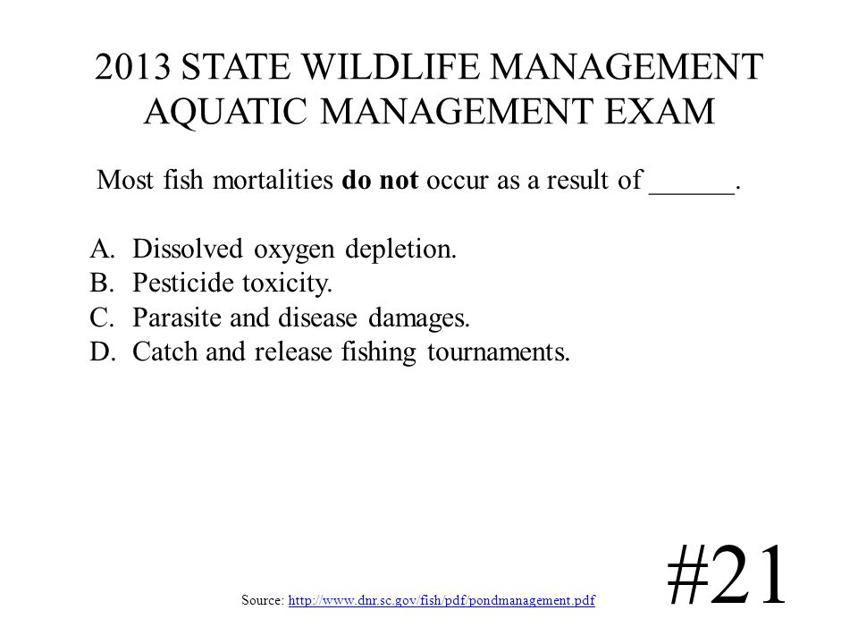 2013 STATE WILDLIFE MANAGEMENT AQUATIC MANAGEMENT EXAM Source: http://www.dnr.sc.gov/fish/pdf/pondmanagement.pdfhttp://www.dnr.sc.gov/fish/pdf/pondmanagement.pdf #21 Most fish mortalities do not occur as a result of ______.