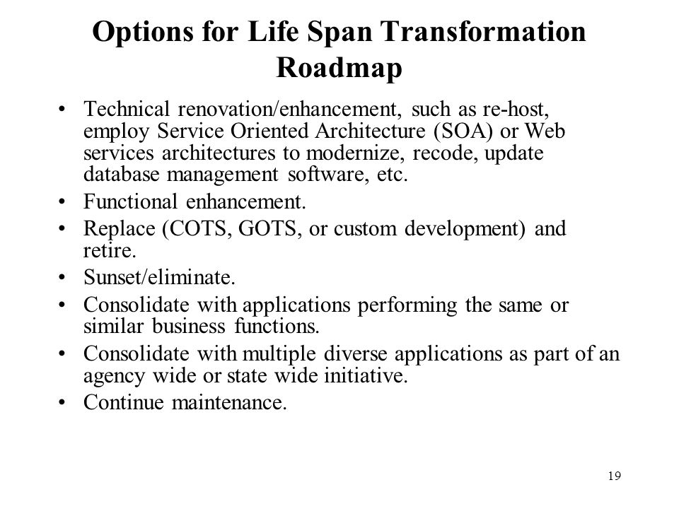 19 Options for Life Span Transformation Roadmap Technical renovation/enhancement, such as re-host, employ Service Oriented Architecture (SOA) or Web s