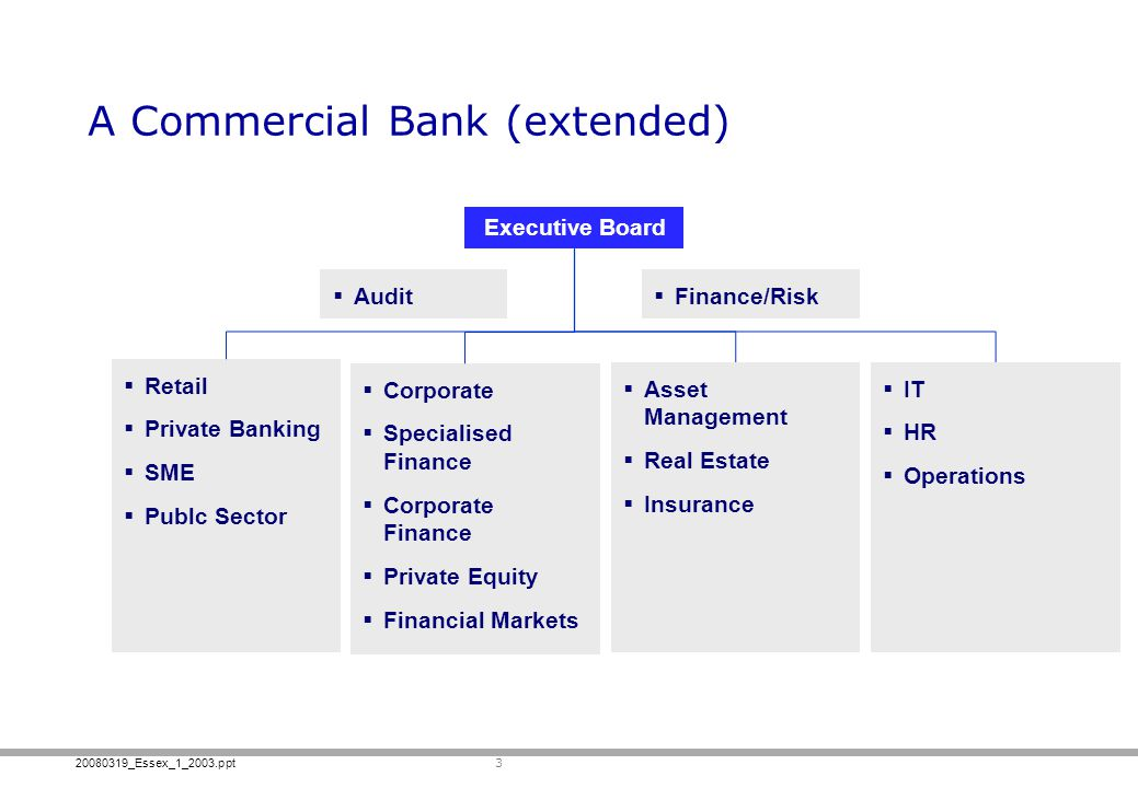 20080319_Essex_1_2003.ppt Retail Private Banking SME Publc Sector A Commercial Bank (extended) 3 Executive Board Audit Finance/Risk Corporate Speciali