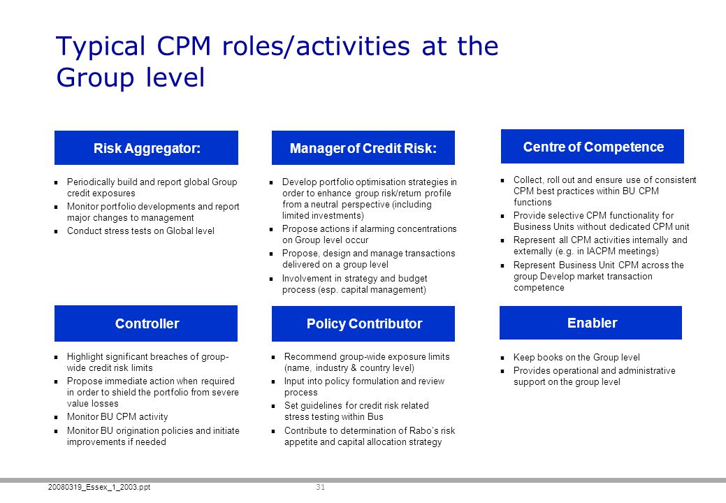 20080319_Essex_1_2003.ppt 31 Typical CPM roles/activities at the Group level Keep books on the Group level Provides operational and administrative sup