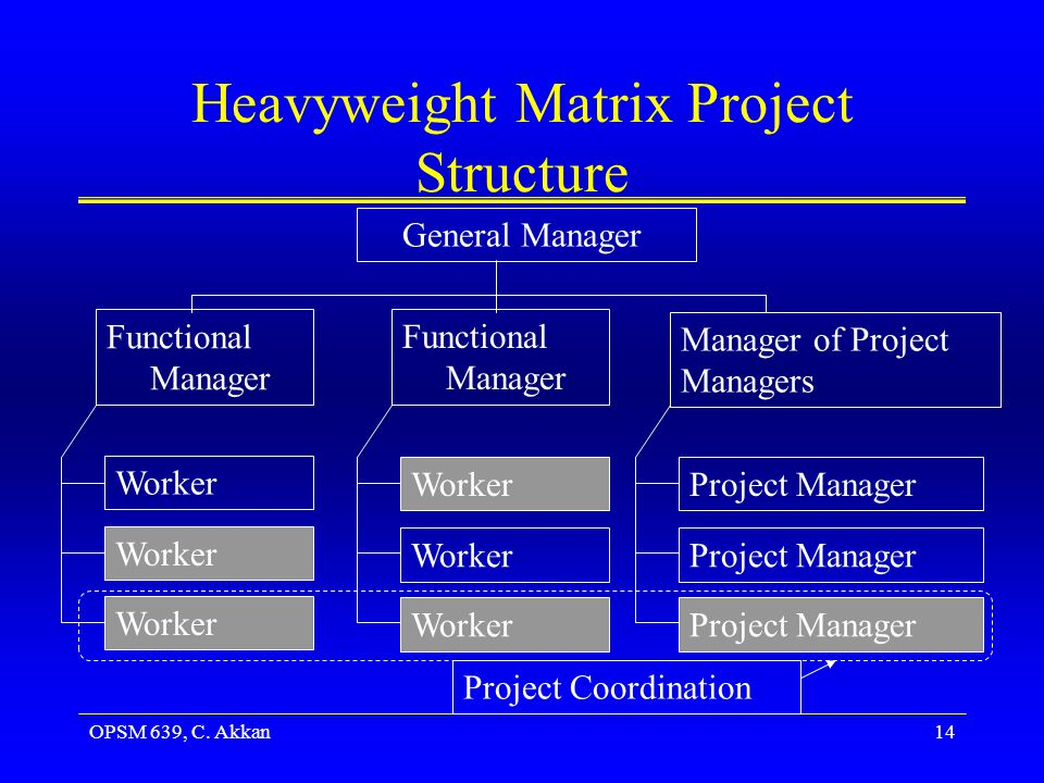 OPSM 639, C. Akkan14 Heavyweight Matrix Project Structure General Manager Functional Manager Manager of Project Managers Worker Project Manager Projec