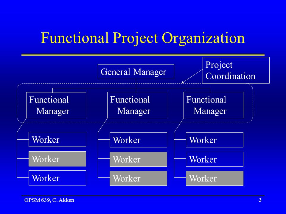 OPSM 639, C. Akkan3 Functional Project Organization General Manager Functional Manager Worker Project Coordination