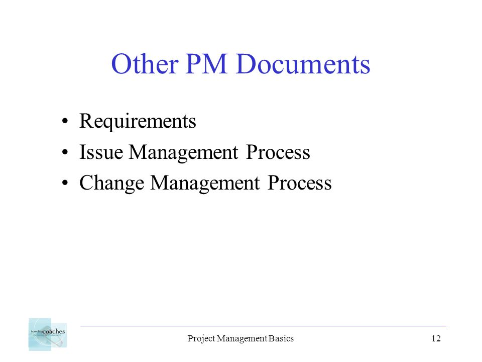 Project Management Basics12 Other PM Documents Requirements Issue Management Process Change Management Process