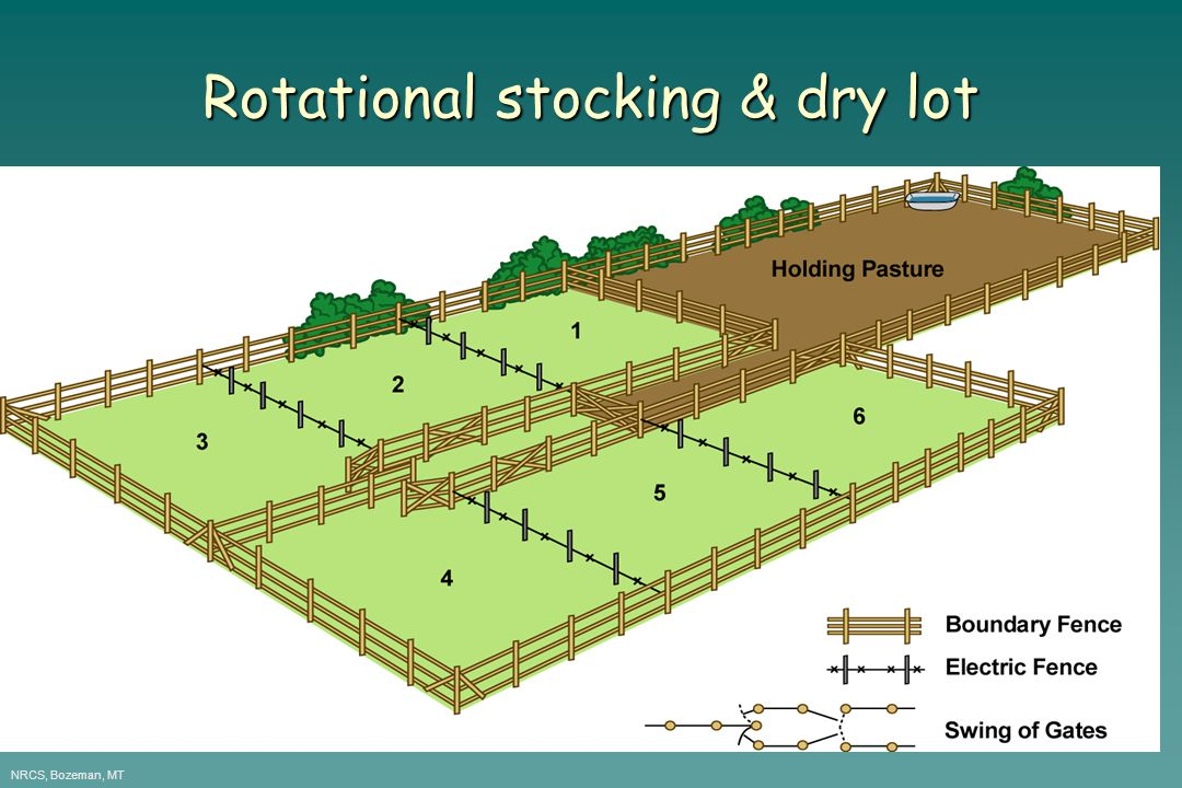 Rotational stocking & dry lot NRCS, Bozeman, MT