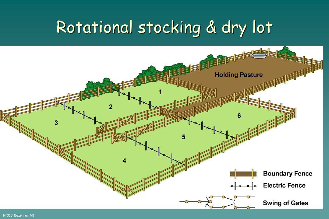 Rotational stocking & dry lot NRCS, Bozeman, MT
