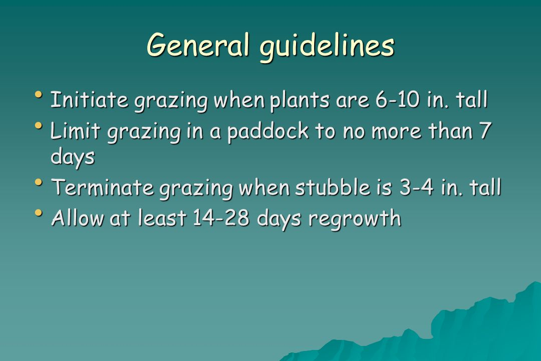 General guidelines Initiate grazing when plants are 6-10 in.