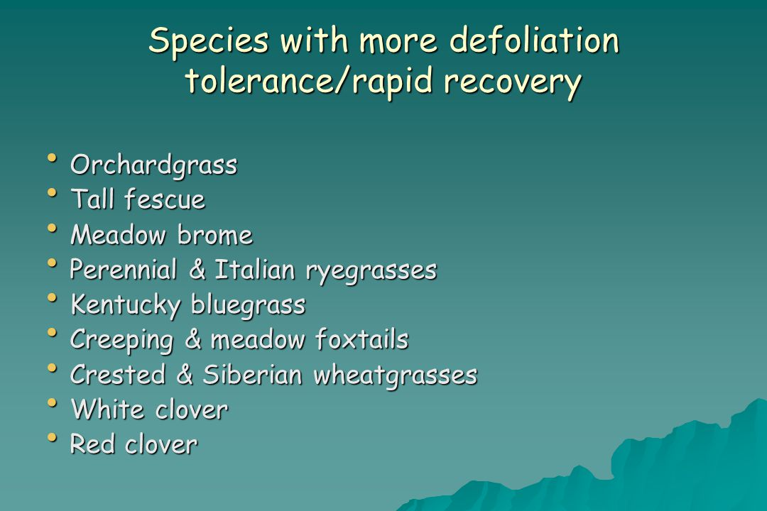 Species with more defoliation tolerance/rapid recovery Orchardgrass Orchardgrass Tall fescue Tall fescue Meadow brome Meadow brome Perennial & Italian ryegrasses Perennial & Italian ryegrasses Kentucky bluegrass Kentucky bluegrass Creeping & meadow foxtails Creeping & meadow foxtails Crested & Siberian wheatgrasses Crested & Siberian wheatgrasses White clover White clover Red clover Red clover