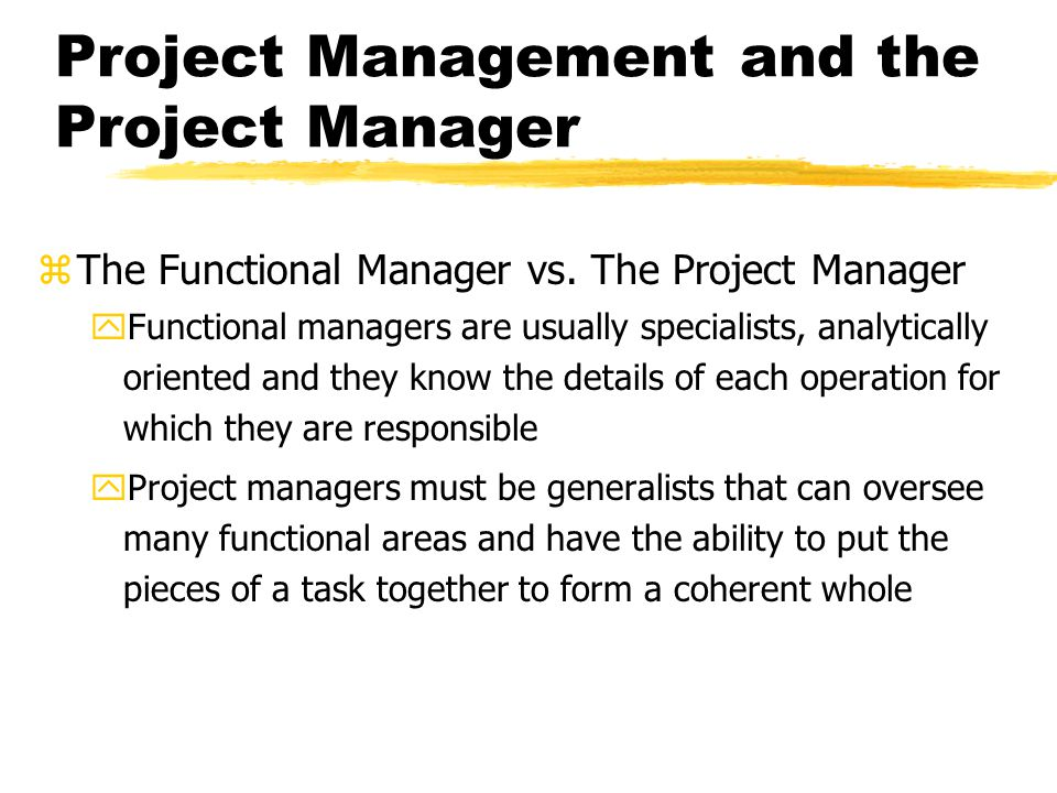 The Project Manager Figure 3-2