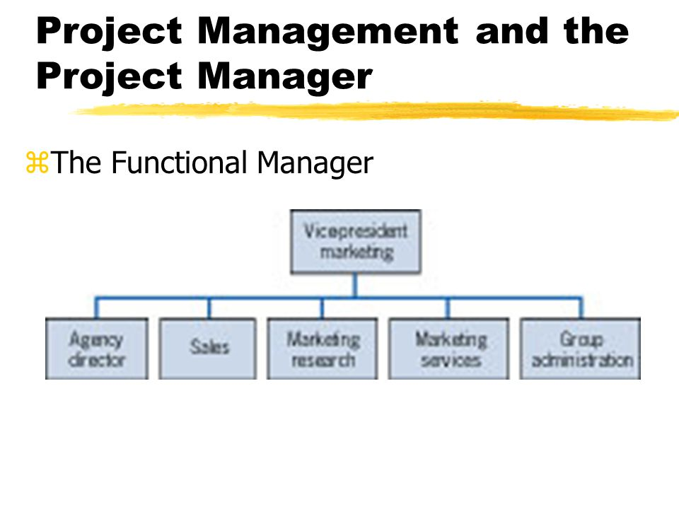 Project Management and the Project Manager zThe Functional Manager yAnalytical Approach yDirect, technical supervisor zThe Project Manager ySystems Approach yFacilitator and generalist