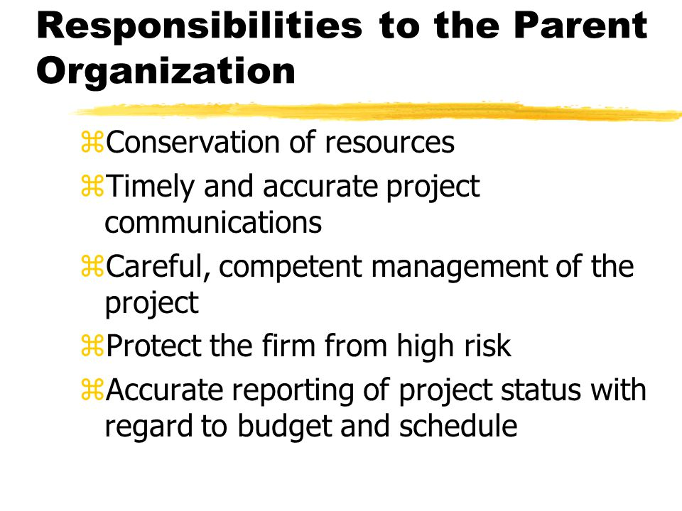Responsibilities of the Project Manager zResponsibility to the Client yPreserve integrity of project and client yResolve conflict among interested parties yEnsure performance, budgets, and deadlines are met zResponsibility to project team members yFairness, respect, honesty yConcern for members future after project