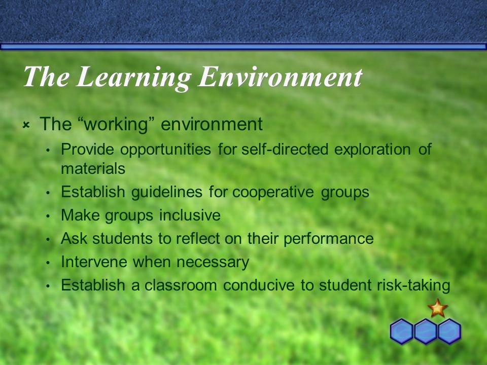 The Learning Environment The working environment Provide opportunities for self-directed exploration of materials Establish guidelines for cooperative groups Make groups inclusive Ask students to reflect on their performance Intervene when necessary Establish a classroom conducive to student risk-taking
