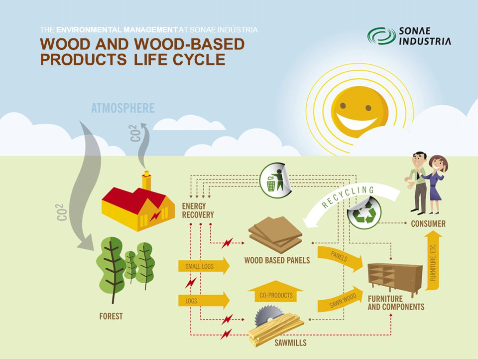 WOOD AND WOOD-BASED PRODUCTS LIFE CYCLE THE ENVIRONMENTAL MANAGEMENT AT SONAE INDÚSTRIA