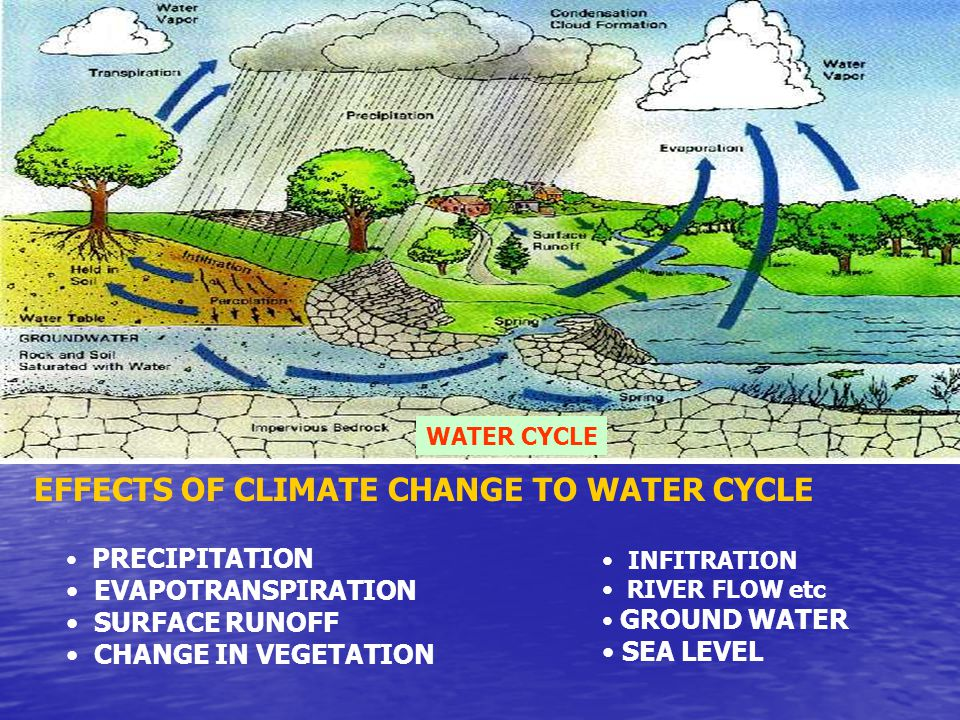 WATER CYCLE PRECIPITATION EVAPOTRANSPIRATION SURFACE RUNOFF CHANGE IN VEGETATION EFFECTS OF CLIMATE CHANGE TO WATER CYCLE INFITRATION RIVER FLOW etc GROUND WATER SEA LEVEL