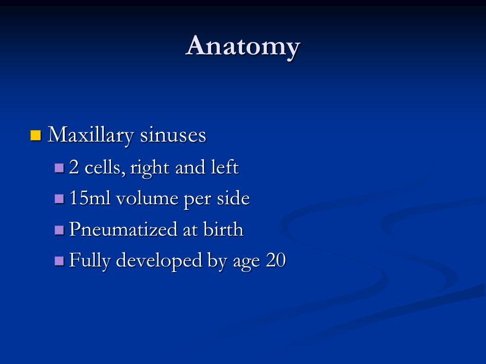 Anatomy Maxillary sinuses Maxillary sinuses 2 cells, right and left 2 cells, right and left 15ml volume per side 15ml volume per side Pneumatized at b