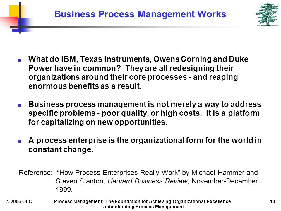 Process Management: The Foundation for Achieving Organizational Excellence Understanding Process Management © 2006 OLC10 Business Process Management W