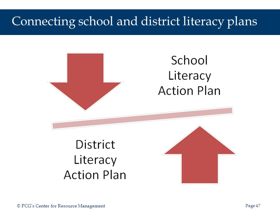 Guidelines for Developing an Effective District Literacy Action Plan Version 1.0