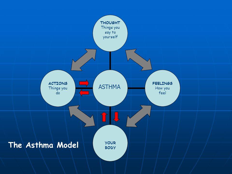 The Asthma Model ASTHMA