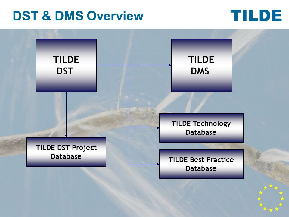 TILDE DMS Leak repair report Make records of your leak repairs Provide your staff with site forms to record data Create statistics of your leak repairs Make records of your leak repairs Provide your staff with site forms to record data Create statistics of your leak repairs