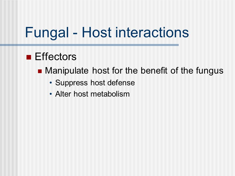 Fungal - Host interactions Effectors Manipulate host for the benefit of the fungus Suppress host defense Alter host metabolism
