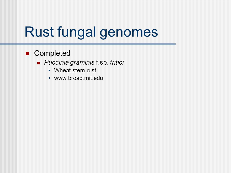 Rust fungal genomes Completed Puccinia graminis f.sp. tritici Wheat stem rust