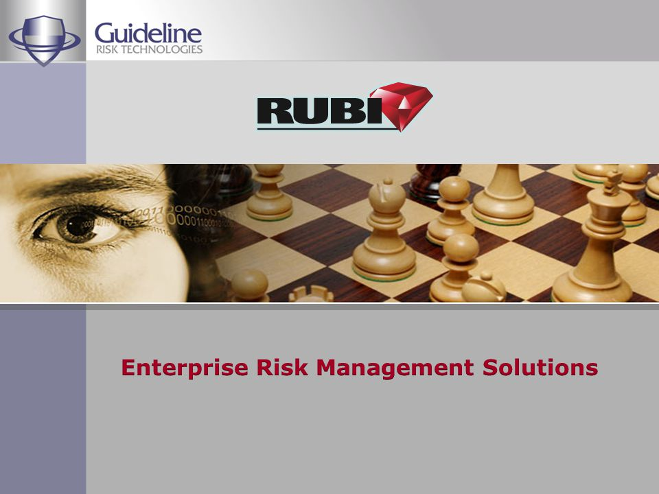 Founded 1993 Primary focus – Enterprise Risk Management Solutions COMPANY PROFILE