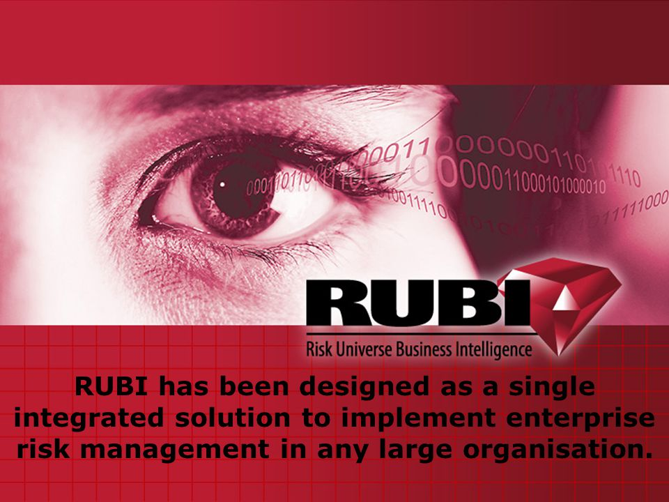 CEO -Risk owner The executive Division The Board Internal Audit Group risk management Sales and marketing Compliance HRQualityTreasury/FinanceProduction Business Function/Activity Goals, objectives, strategies objectives, strategies Plans and Projects objectives, strategies The Executive division defines its strategies and business objectives RUBI drives corporate governance accountability and responsibility